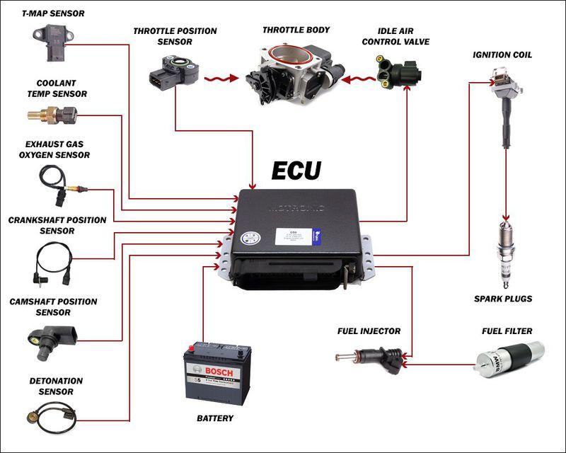 nguyên lý ECU.jpg