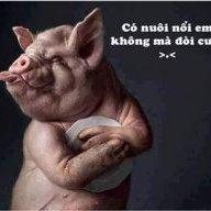 ThoTang_VP